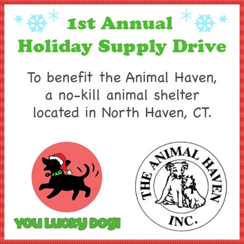 Holiday Supply Drive to Benefit the Animal Haven in North Haven CT